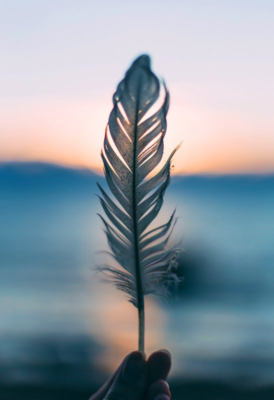 ayurveda feather