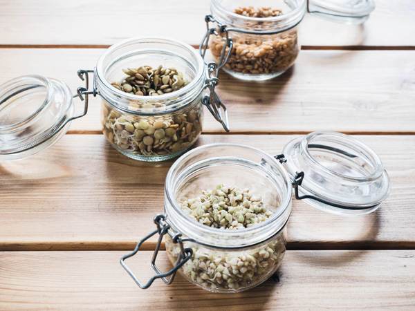 sprouting seeds for health