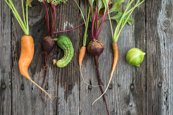 ugly vegetable produce