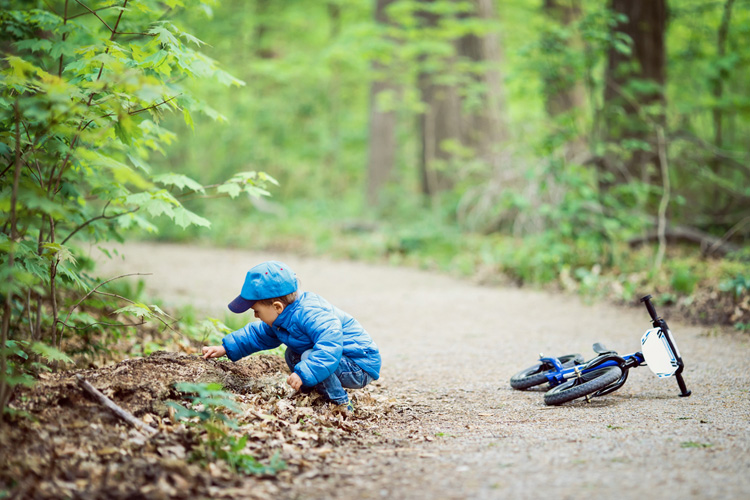 Nature Play in the forest