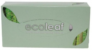 Ecoleaf 100% Recycled Family Tissues 2Ply 110 Tissues
